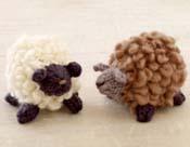 Fluffy Little Sheep