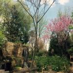 Beautiful Zoo