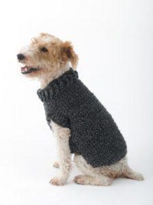 The Poet Dog Sweater (Crochet)